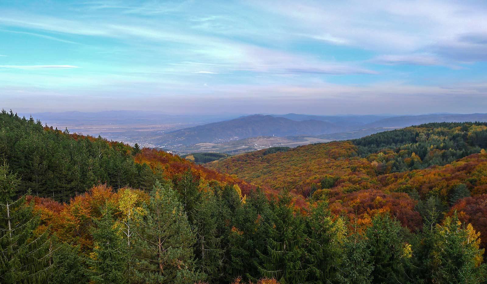 vitosha-mountain